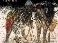Anatomía del Toro de Lidia: el Morrillo