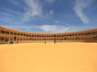 Beyond the arena: museums full of bullfighting treasures (III)