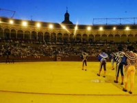 Summer nights at Las Ventas and the Maestranza of Seville