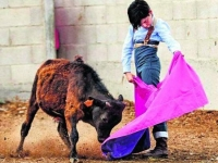 The dream of being a bullfighter